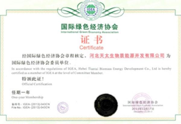 国际绿色经济协会证书