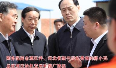 国务院副总理汪洋询问天太杨小亮总经理压块机发展和推广情况
