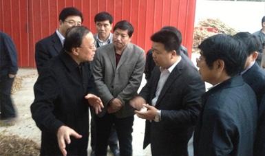 河北省副省长、唐山市委书记,姜德果到我公司压块基地