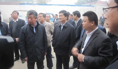 河北省副省长沈小平到我公司压块基地考察